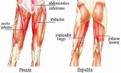 desgarro muscular de la pierna derecha